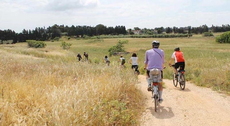 Cicloturismo in Sicilia alla scoperta dei migliori luoghi da visitare in bici